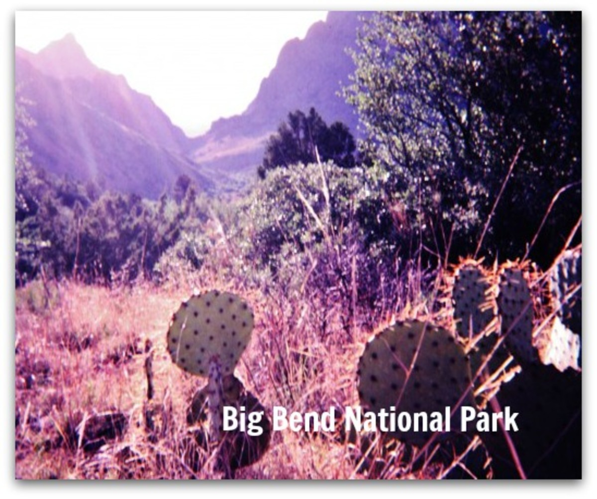 Big Bend National Park -  Pictures of Different Areas Within This Impressive Park