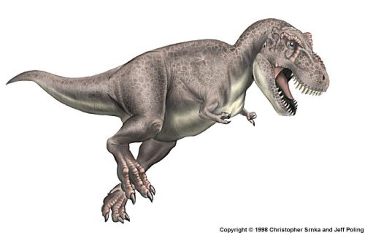 Tyrannosaurus Running