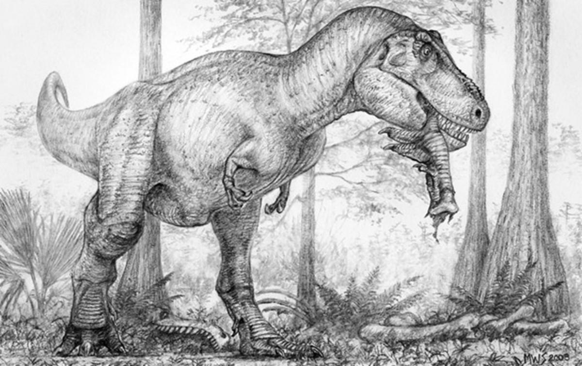 T-rex Eating another T-rex foot