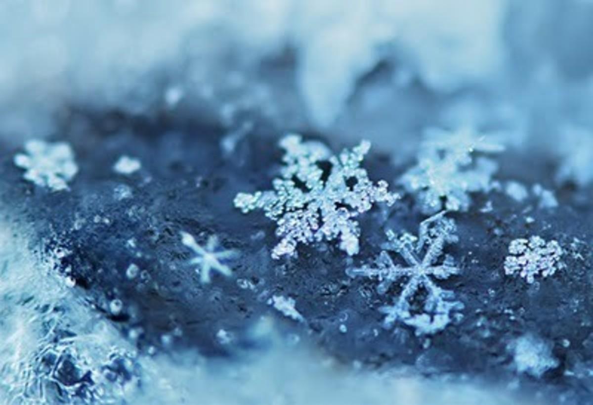 Winter Jewels:  A Poem