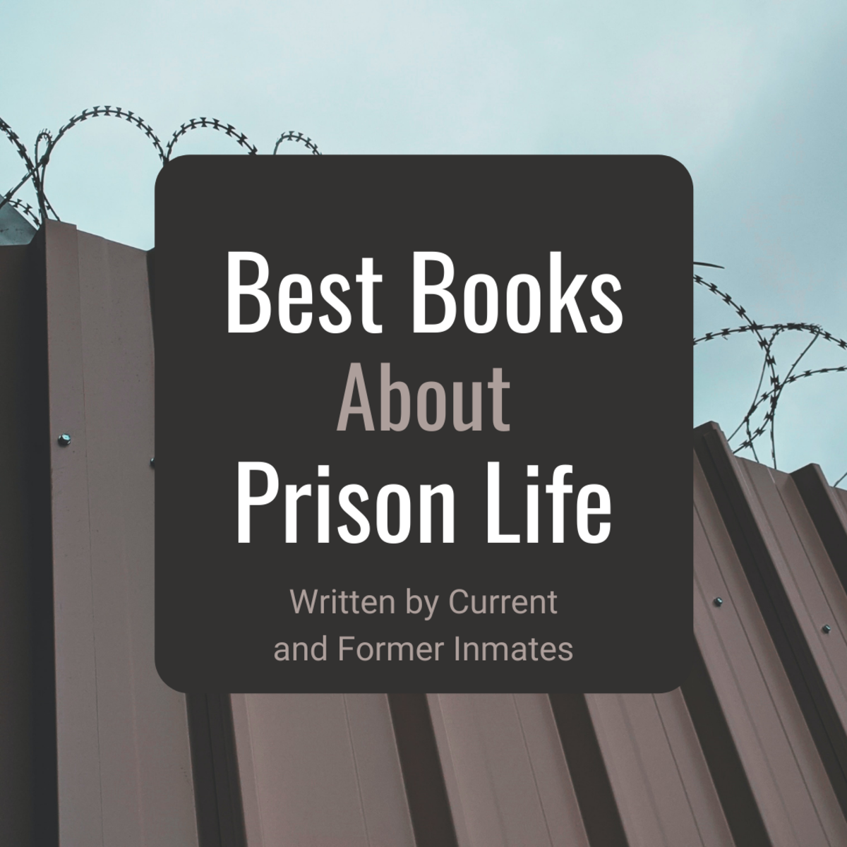 Discover some of my favorite books written by people who are currently (or were formerly) incarcerated.