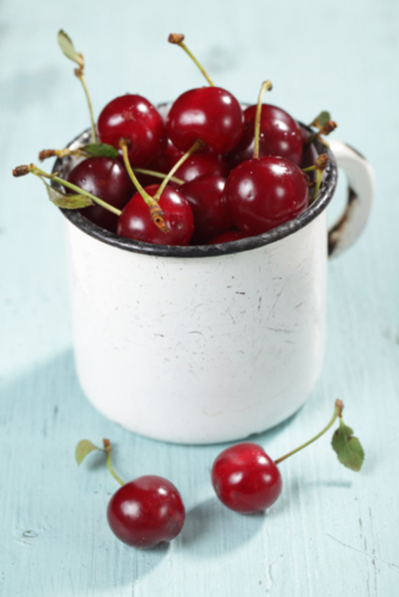Sour Cherries in a vintage rustic mug. Image:  Lilyana Vynogradova|Shutterstock.com