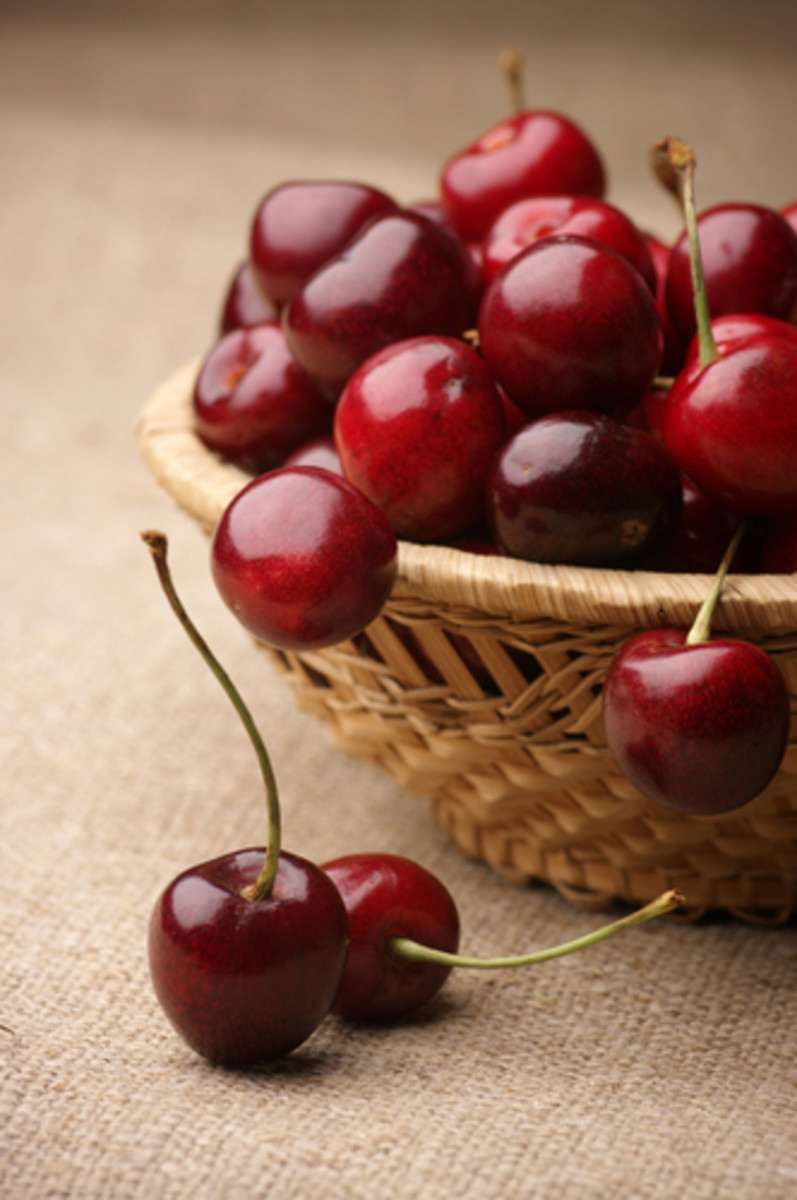 Cherries in wicker basket. Image:  Svetlana Lukienko|Shutterstock.com