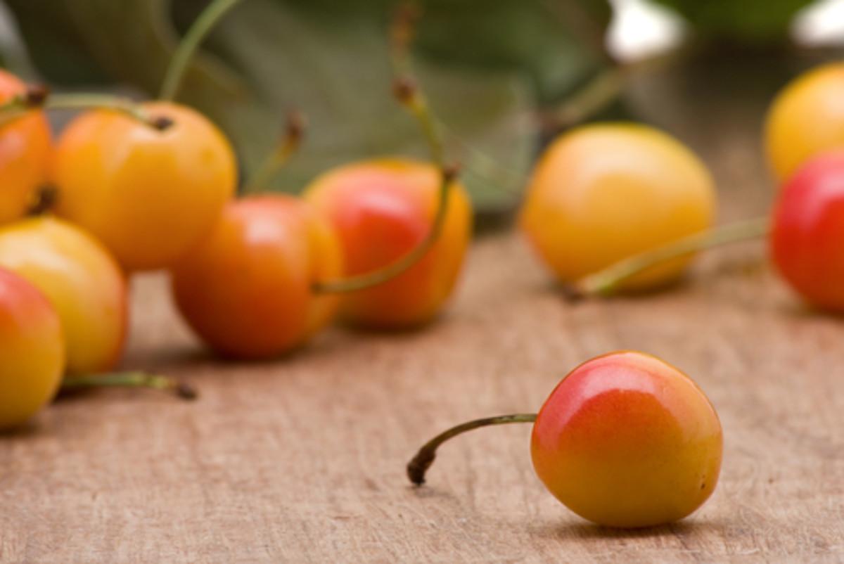 Rainier Cherries on wooden table. Image:  Shawn Hempel|Shutterstock.com