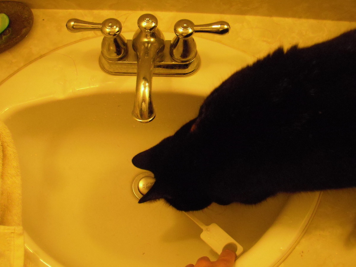 Unclog your kitchen sink drain tonight with zip it tool before drano