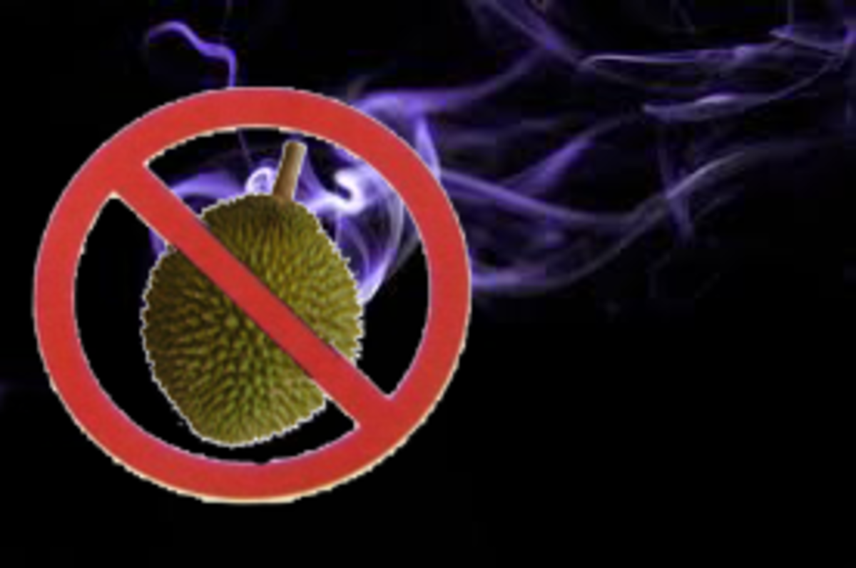 durian-symbol-of-mystique
