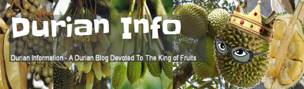 A blog about durians. Everything about this tropical fruit from the hundreds of different cultivars or varieties to how it is planted and managed on a commercial scale.