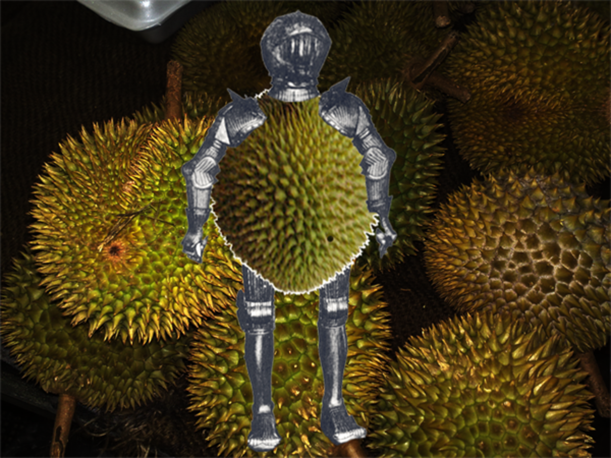 A durian is hard and heavy and covered with sharp thorns. It can be used as a weapon to dash out your brains.
