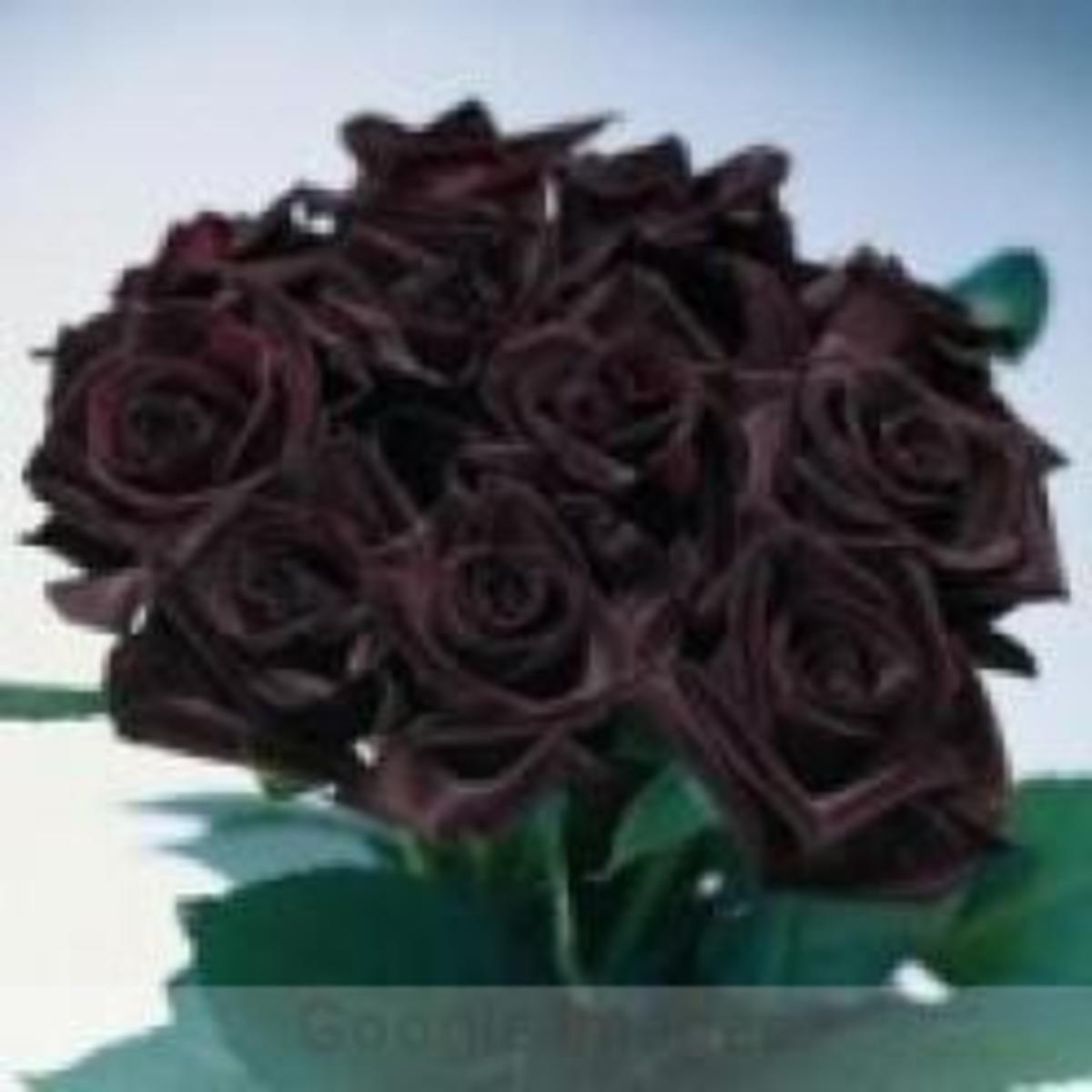 sending-roses-to-your-love