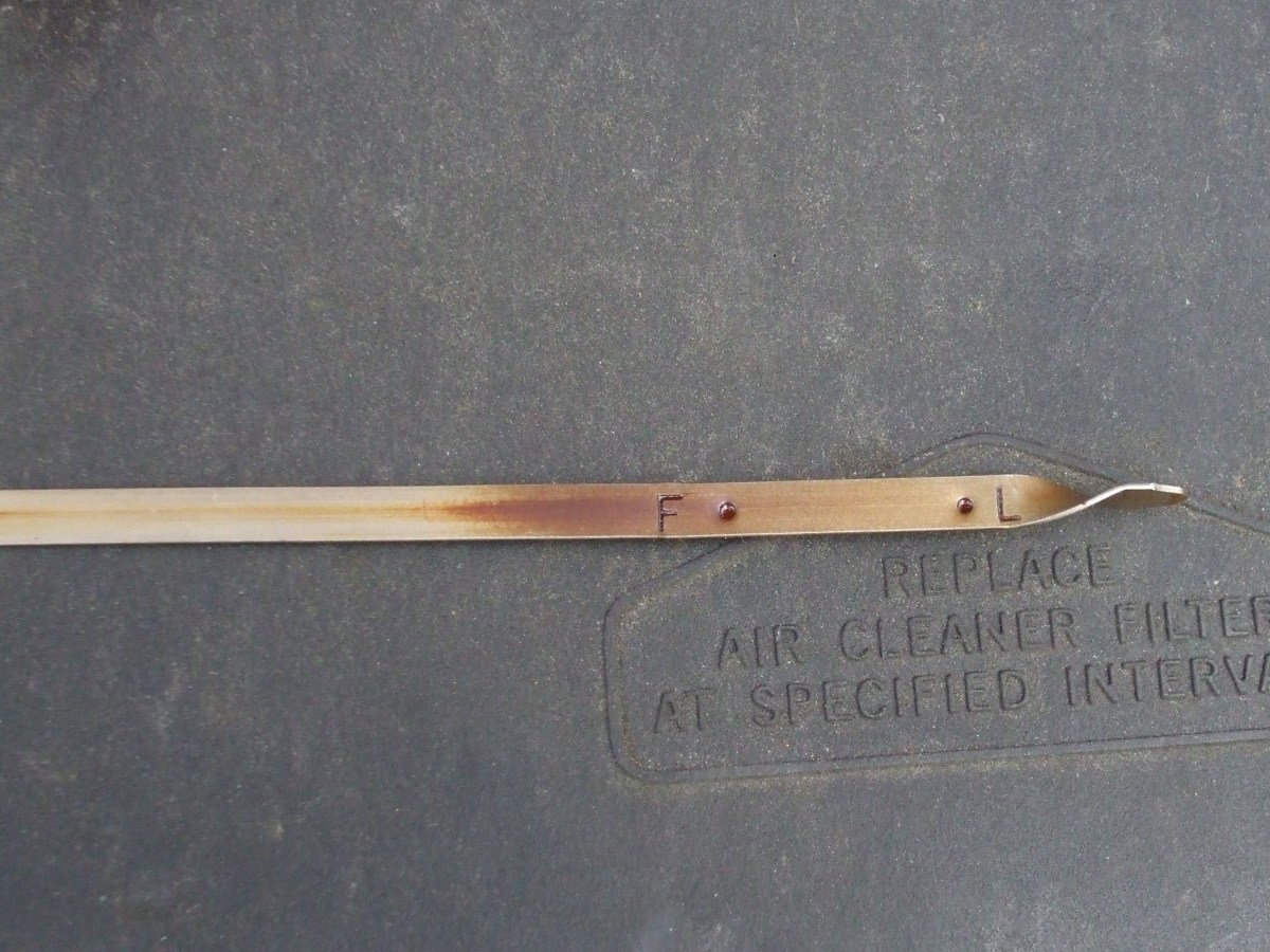 The dried end of an oil dipstick.