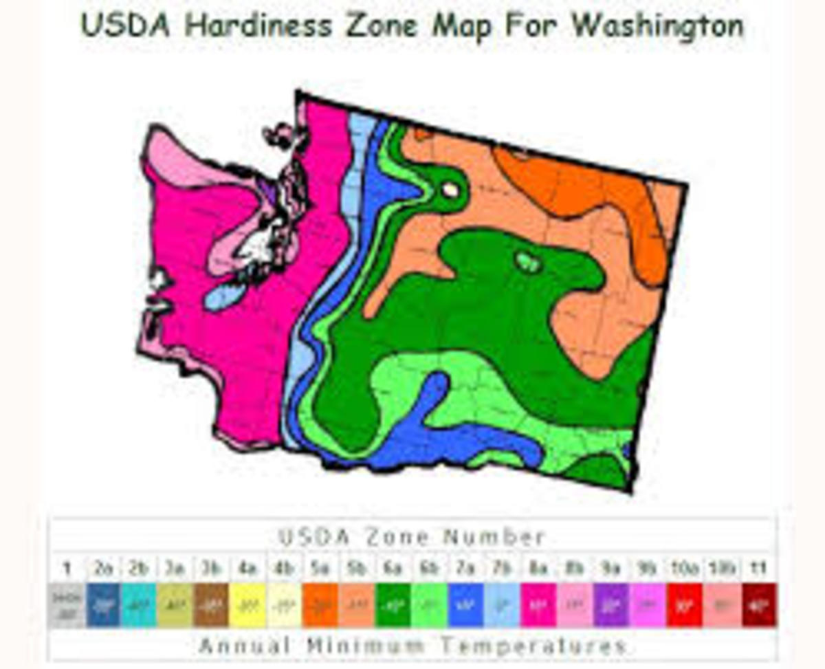 is-washington-a-good-state-to-go-off-the-grid