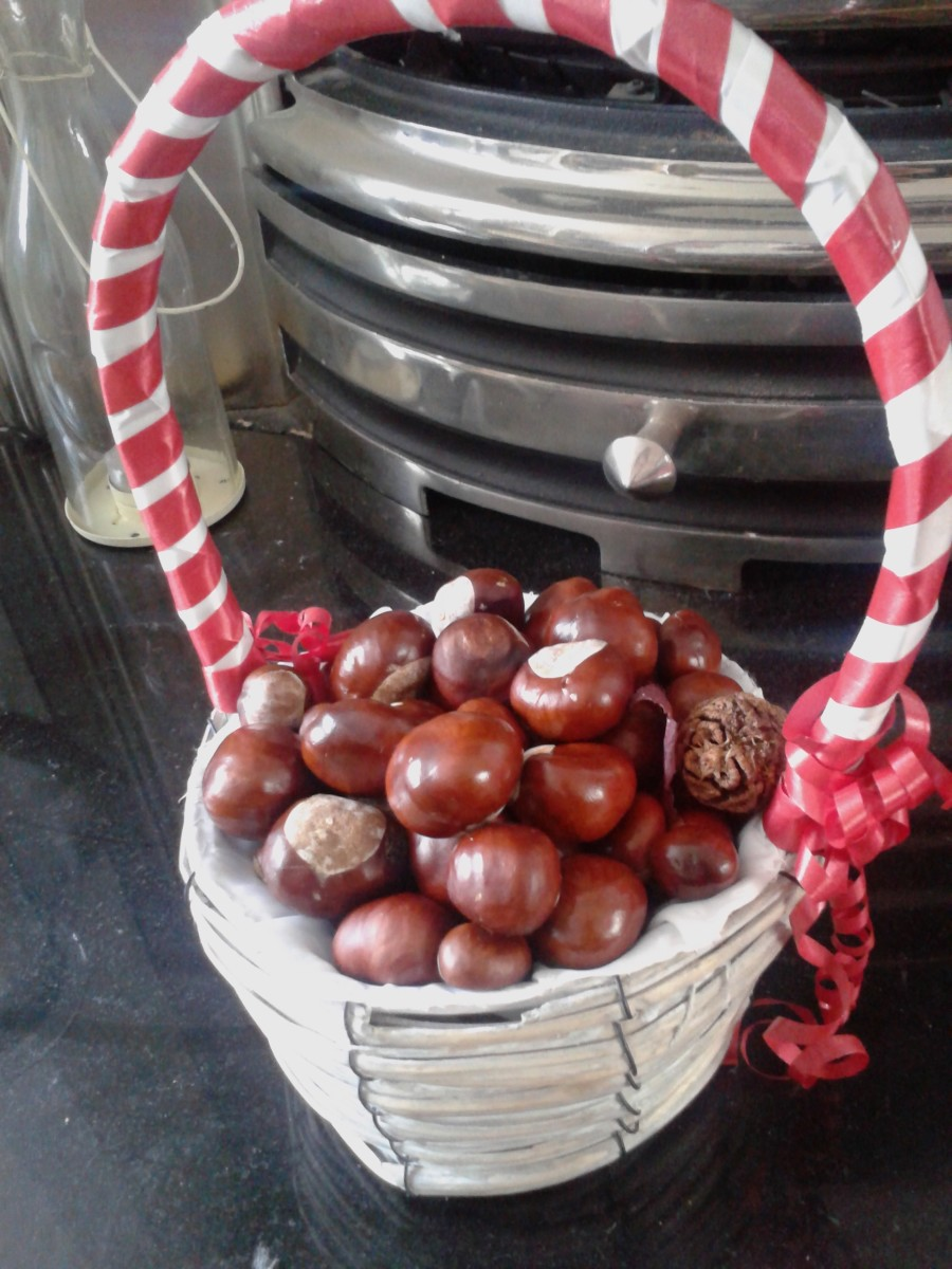 Christmas Decorations with Conkers