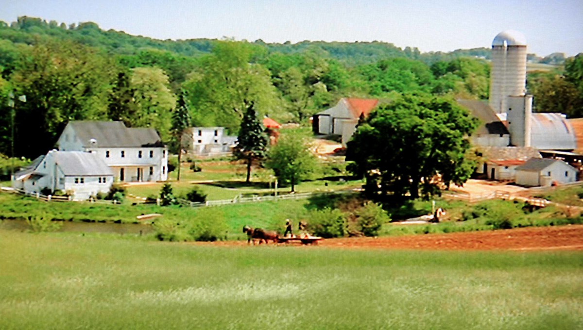 The peaceful Amish community - soon to become home to a hard bitten Philadelhia cop, and the threat of modern American bloody violence