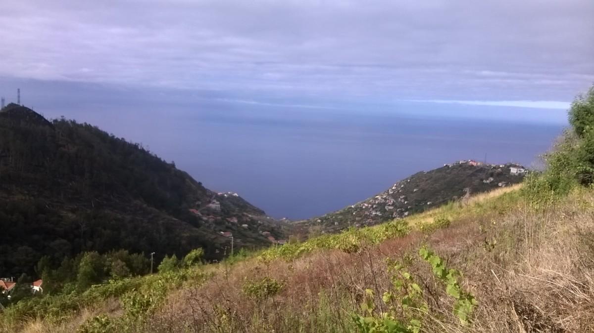 Madeira Island scenery