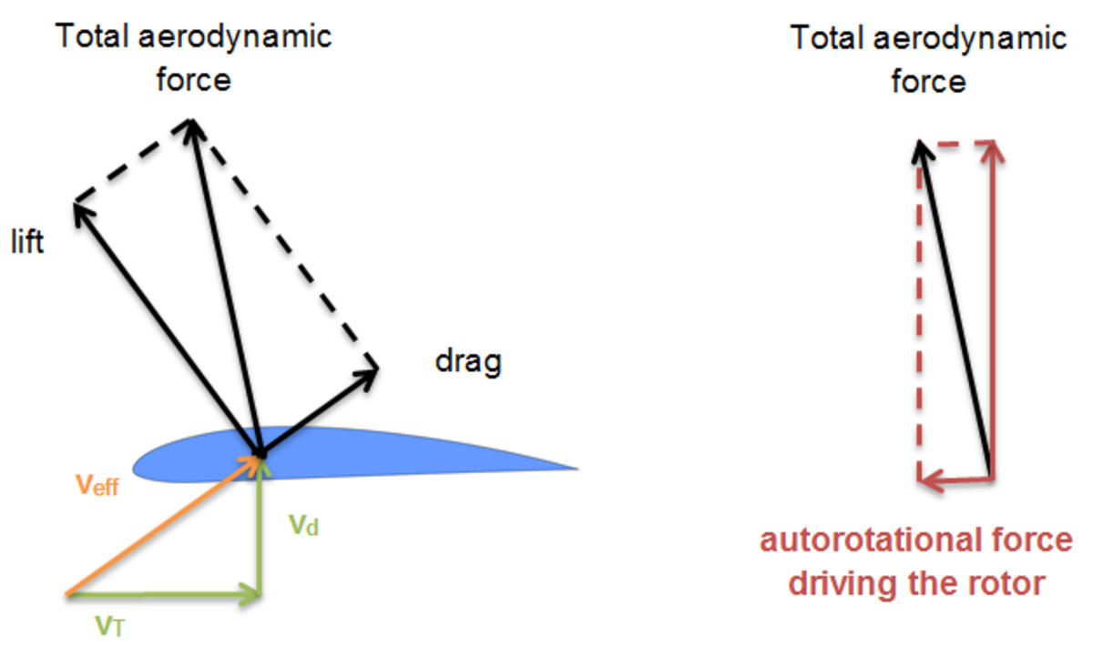 The total aerodynamic force acting on the rotor element is tilted forward, resulting in an autorotational force driving the rotor
