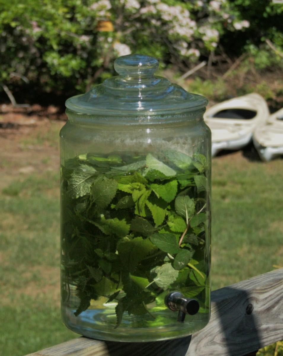 Cover the container to prevent insects and debris from getting into it, and place it in the sun.