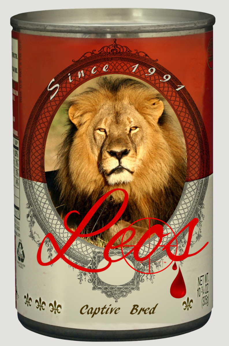Photo satirizing canned lion hunting derived by RG Kernodle from source images.