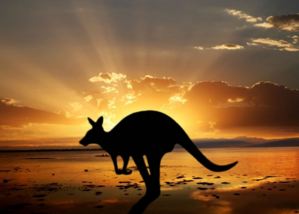 he-comes-from-the-land-down-under-jodah