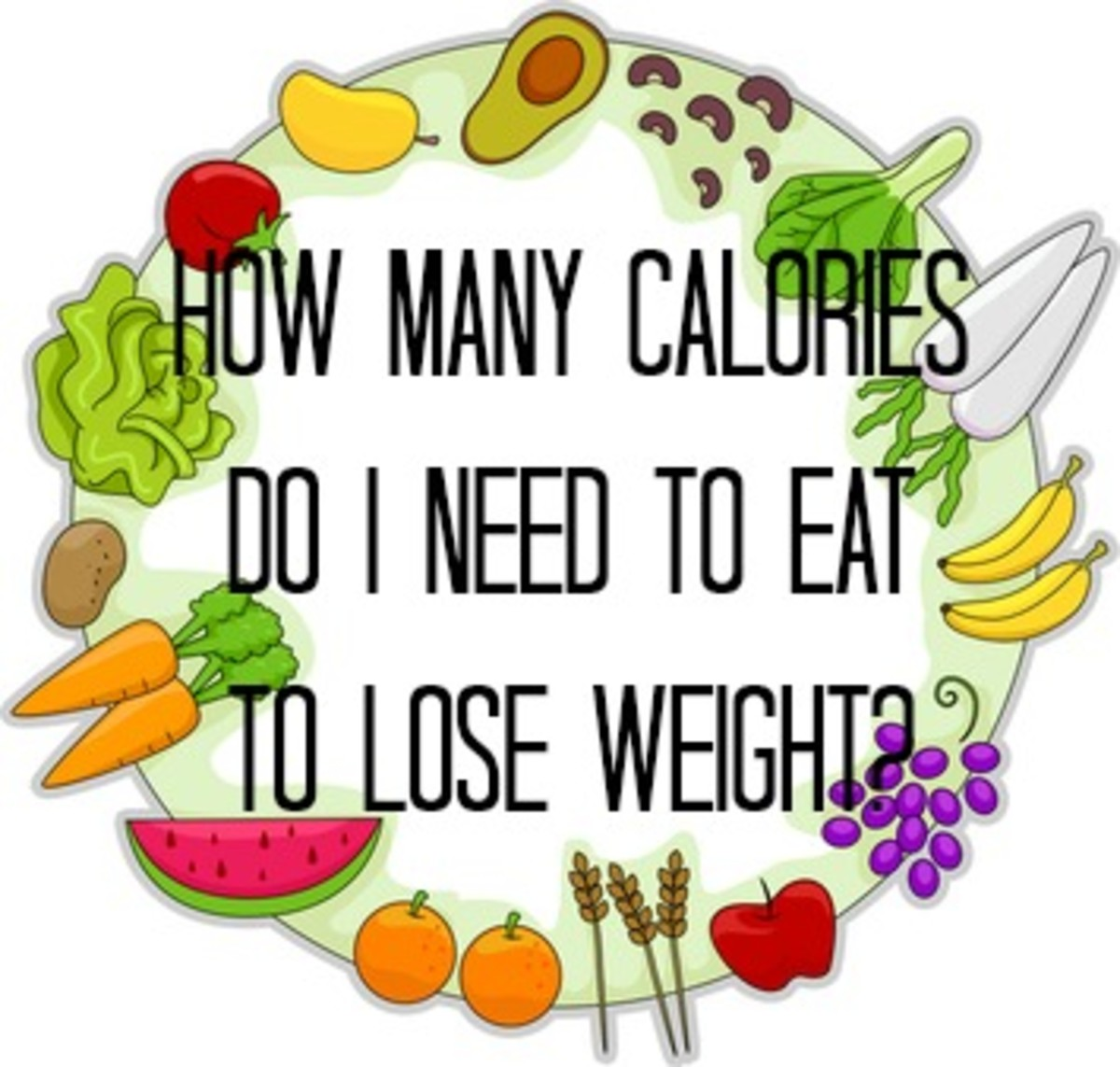How many Calories does your Body need?