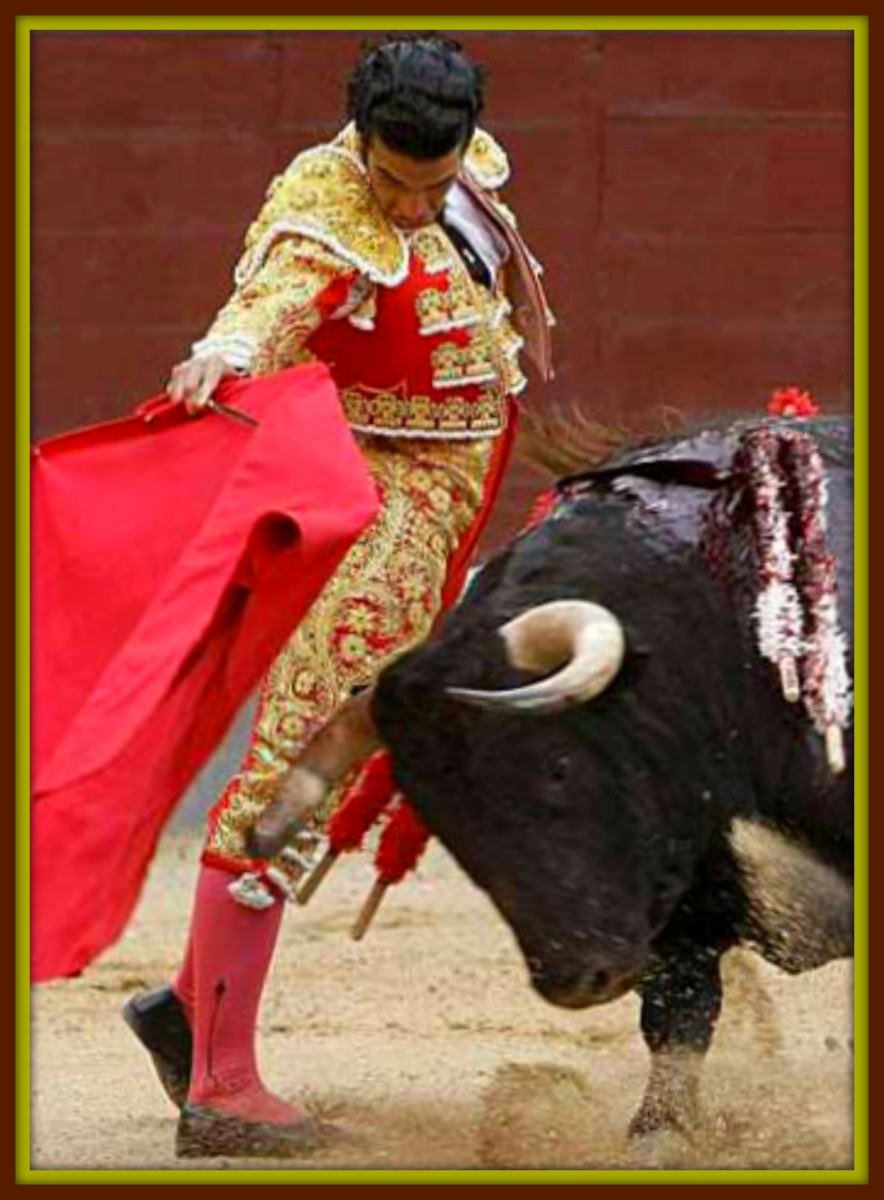 Finally the matador takes his turn with the bull. He uses the muleta continuously to trick the bull, waiting until the bull attack, then with a quick step avoids a collision. The closer he lets the bull pass his body, the more applause he will get.
