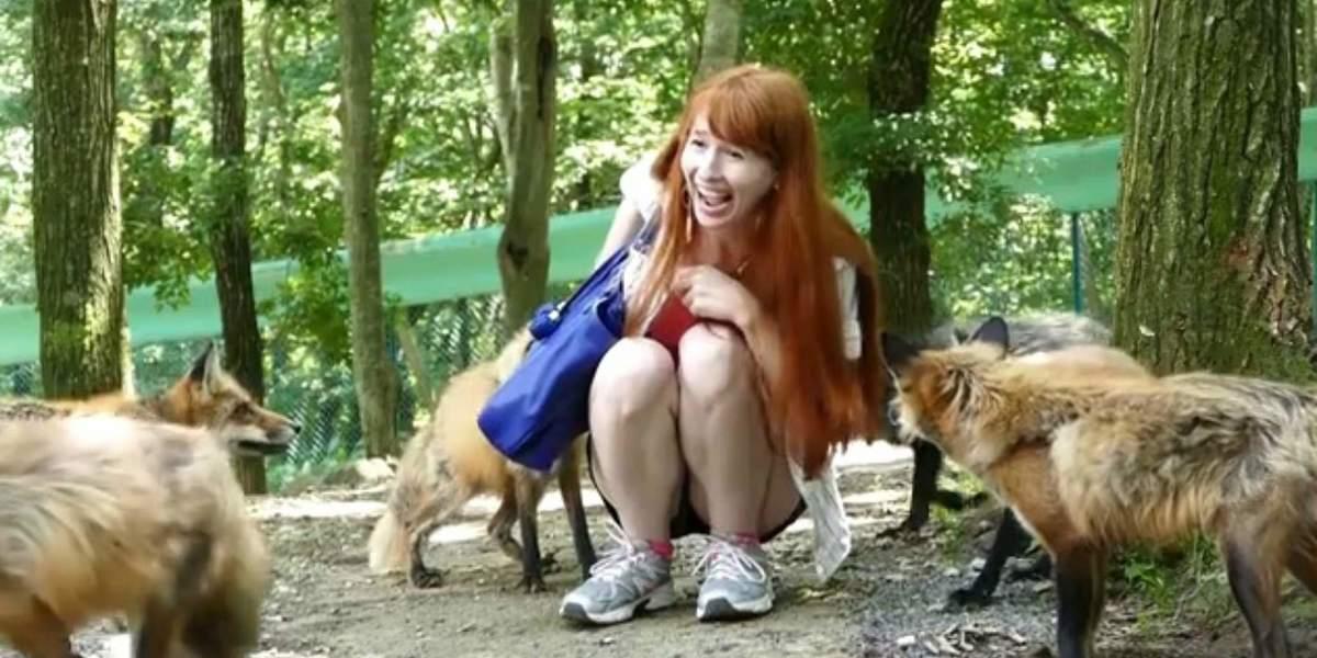 Japan's Fox Paradise