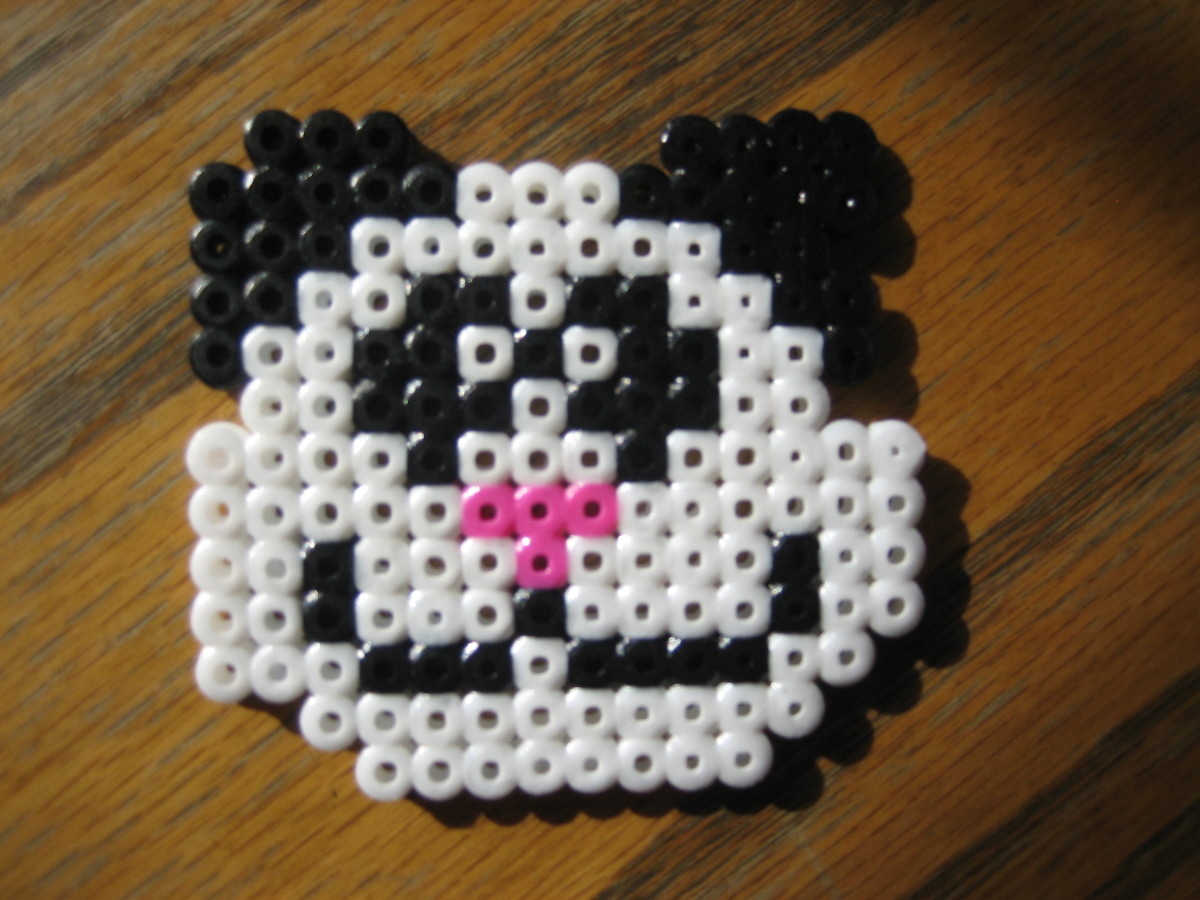 Panda Bear.  Created by my 7 y/o. Template found online.