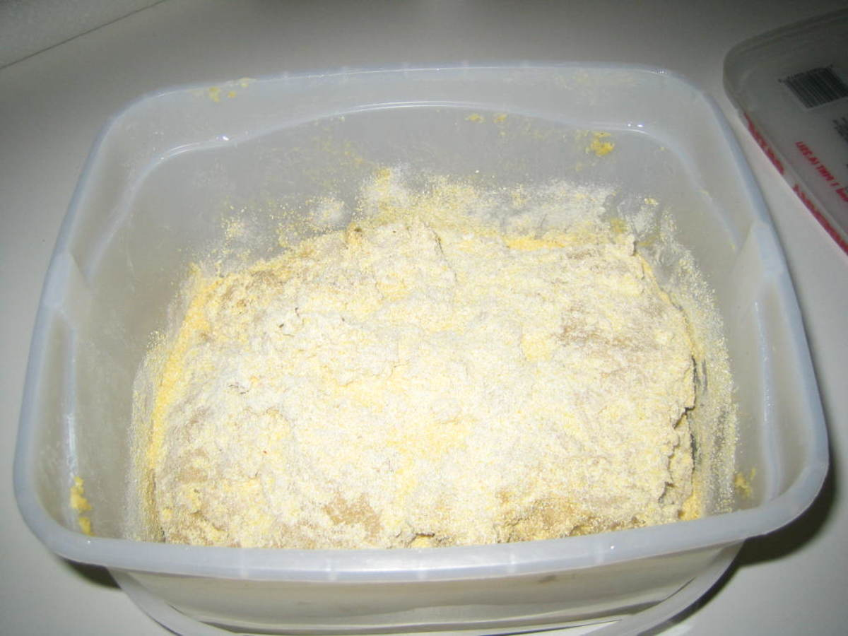 Dough Bait transferred to a storage container and a dusting of corn meal applied