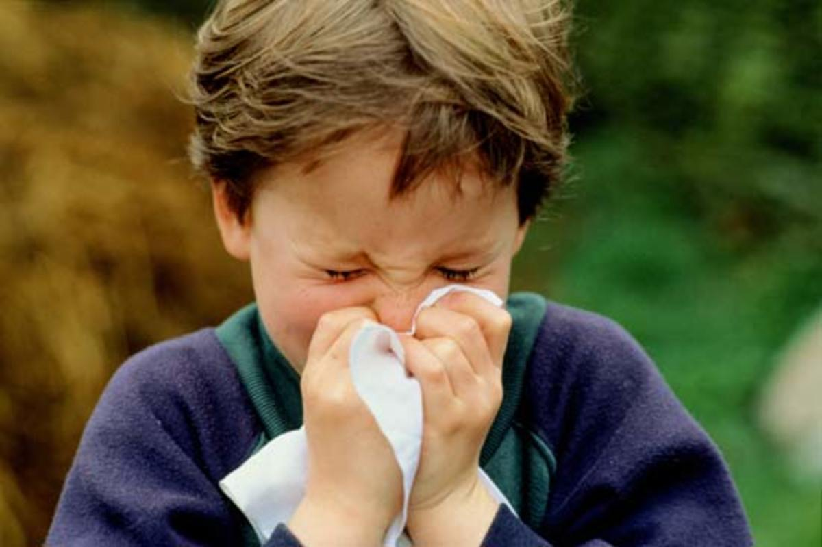 Flu and Cold Remedies That Work