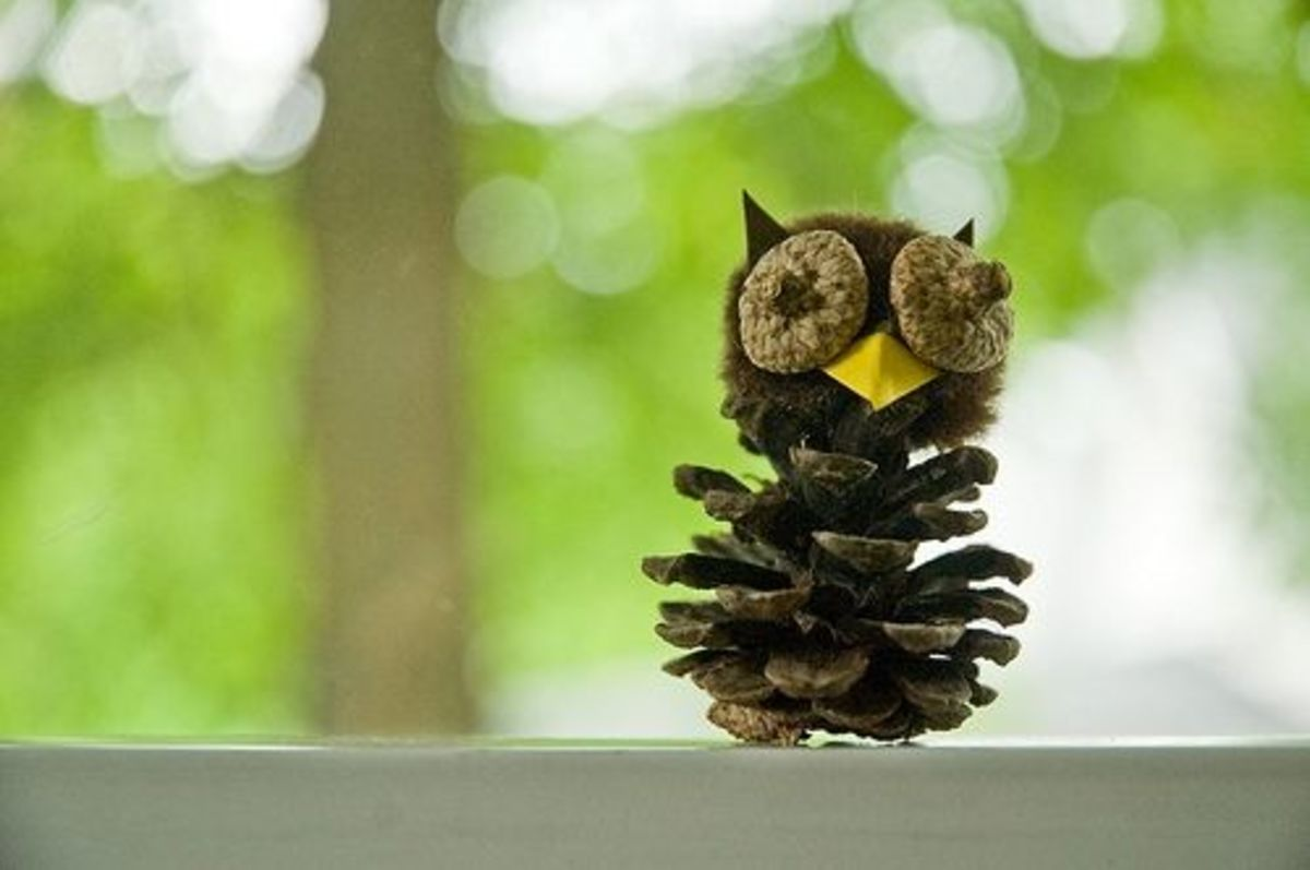 Owl Made from a Pinecone