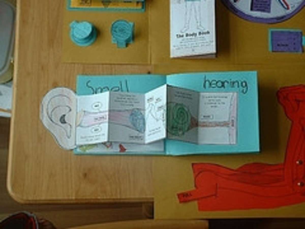 human body lapbook minibook on the ear