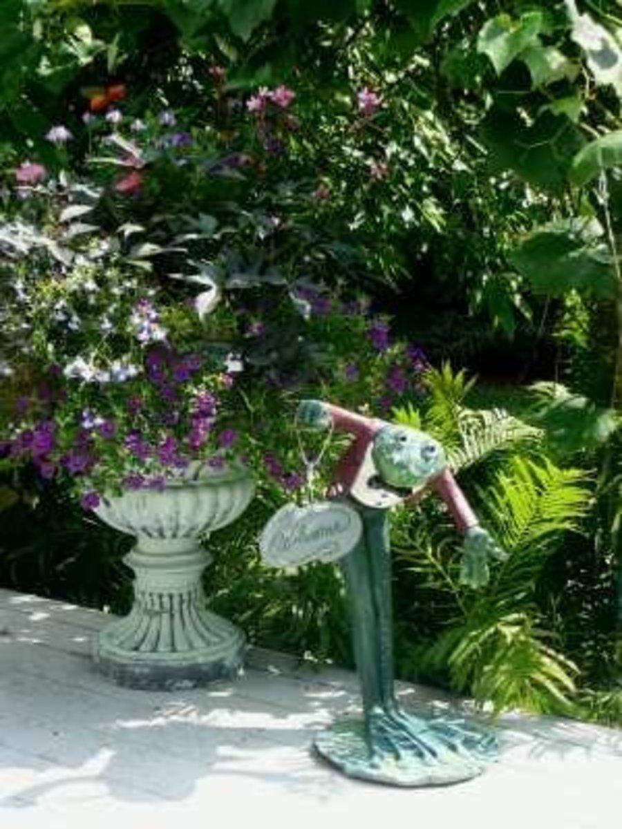 "Welcome to my ""Deck Garden""..."