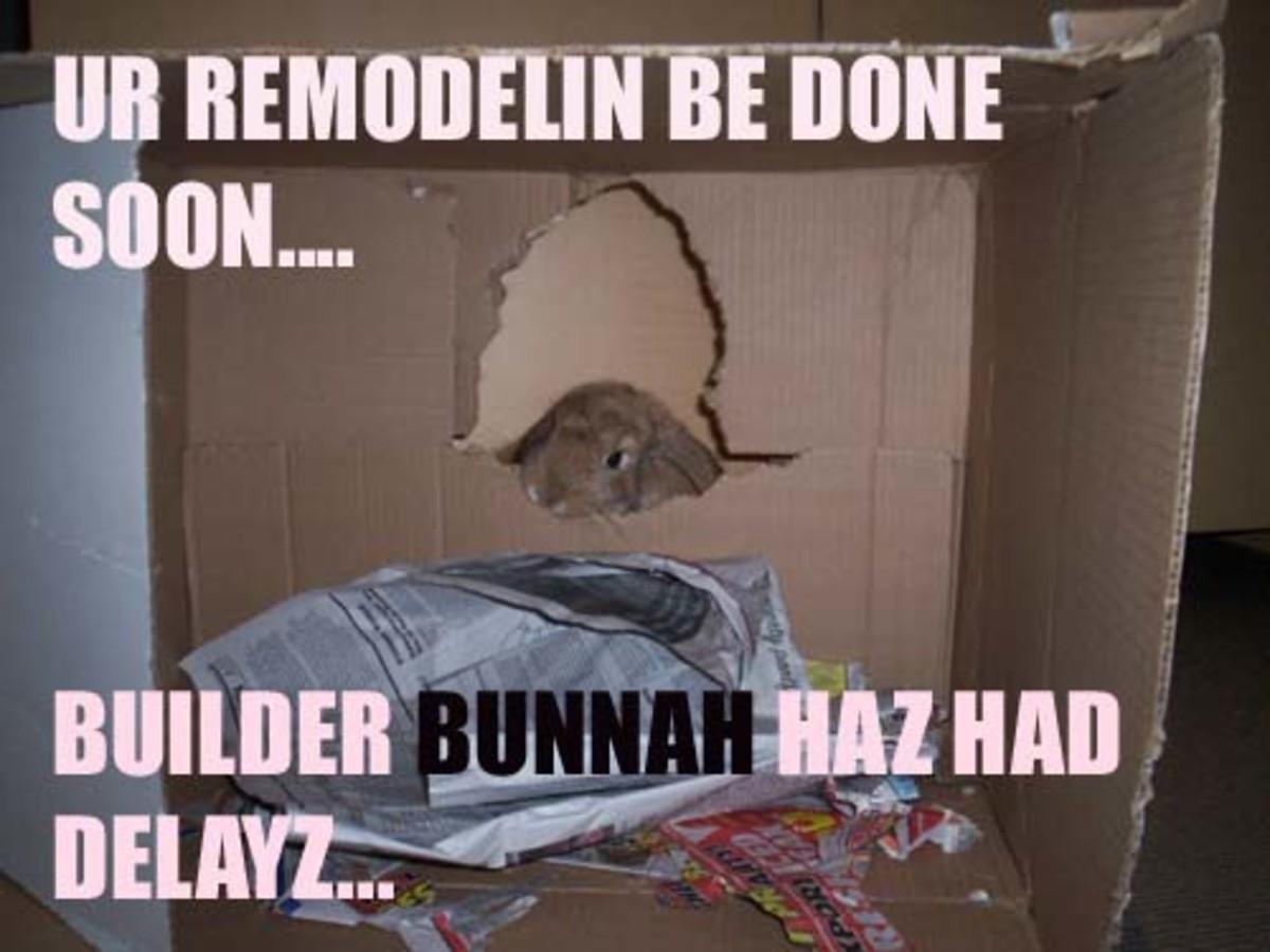 lol-bunnies
