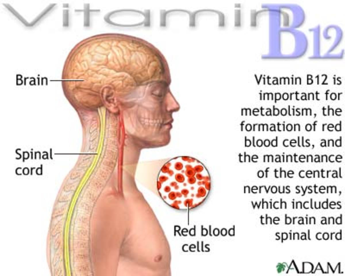 Health Benefits of Using Vitamin B12