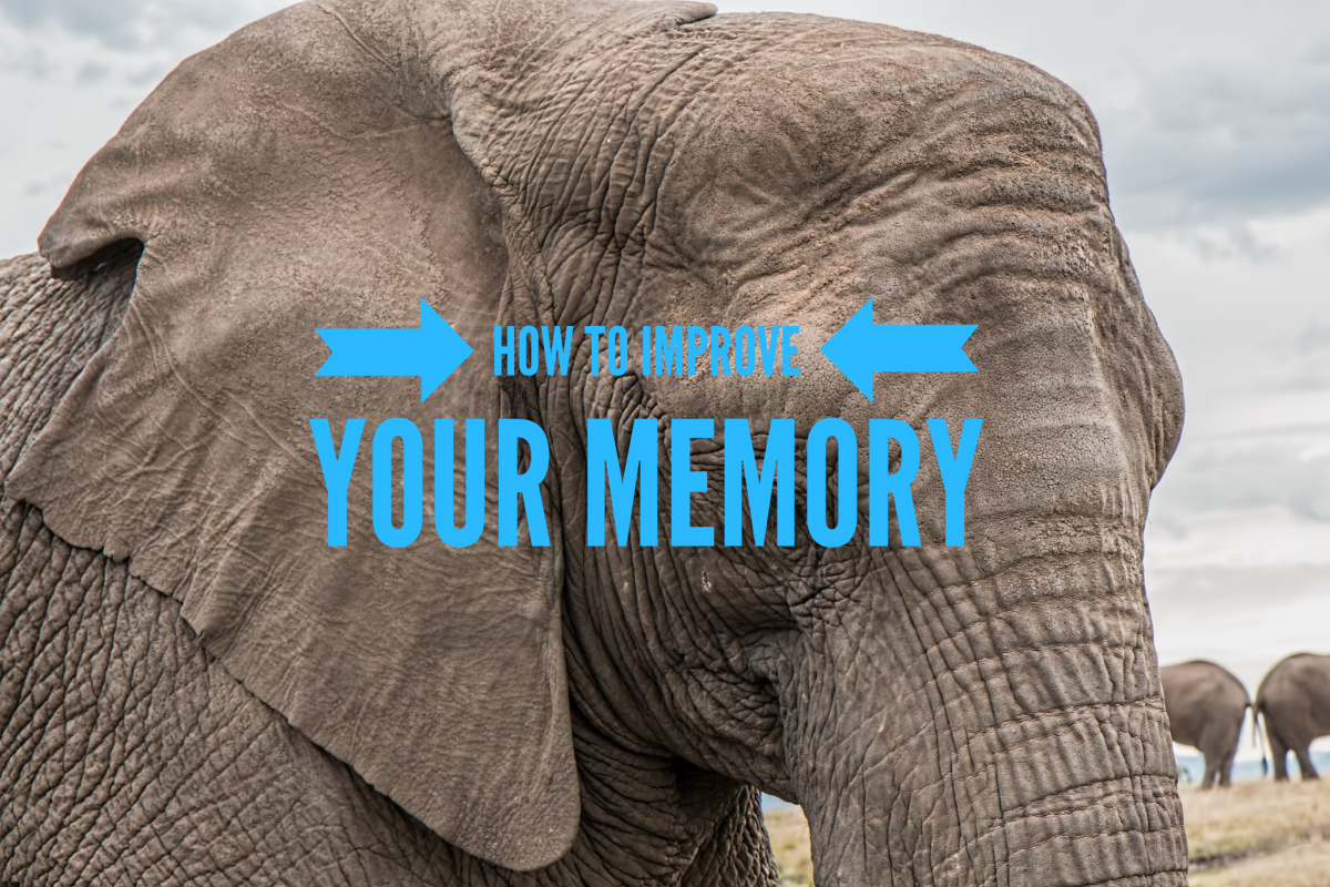 Improving your memory isn't as impossible as it seems. Simple things like eating the right foods, exercising and getting adequate sleep on a regular basis, get you high points towards a good memory.