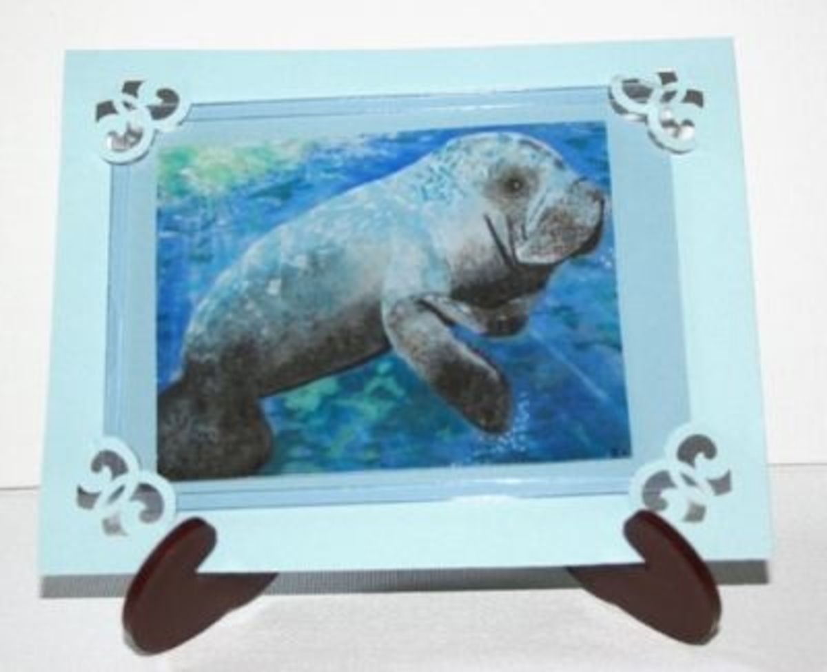 Framed and placed in a plastic baseball card holder on an easel