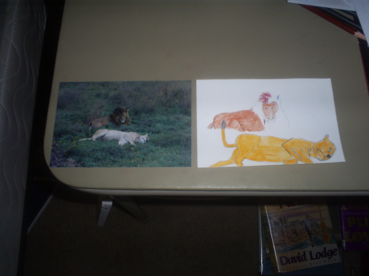 I used a picture of two lions as the inspiration for my pop-up image.