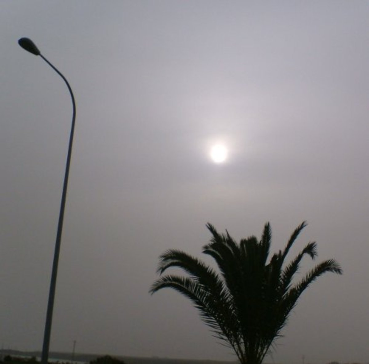 Sun in early afternoon