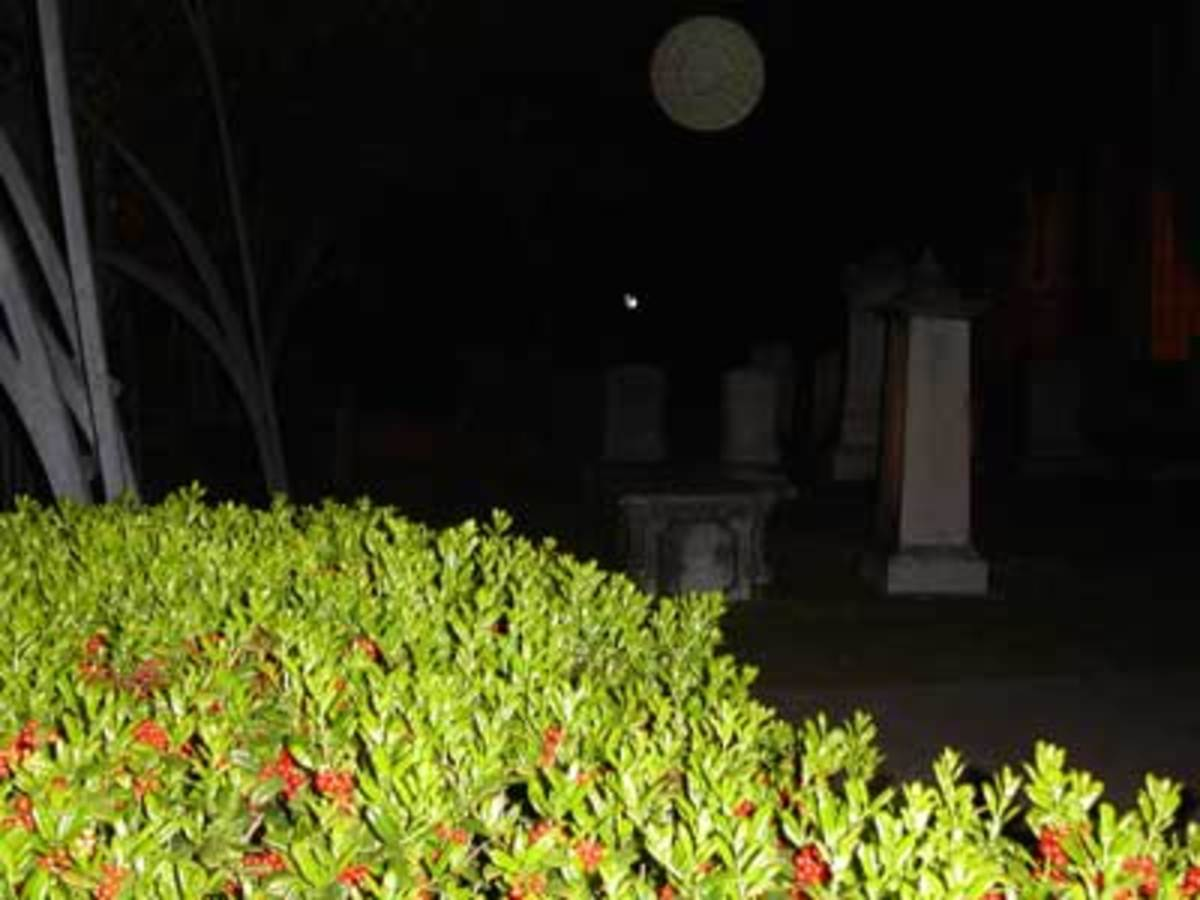 Charleston Graveyard Ghost Orb