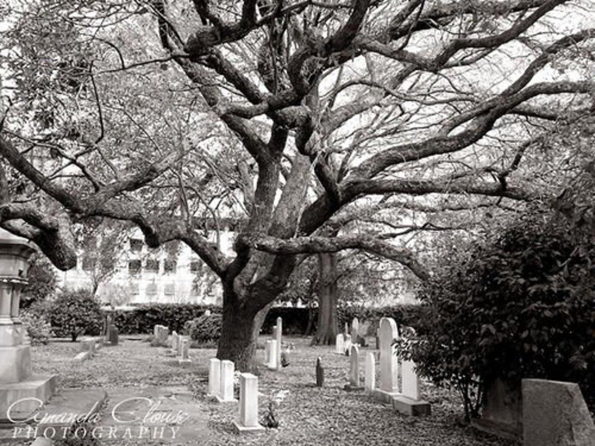 Charleston SC Graveyard