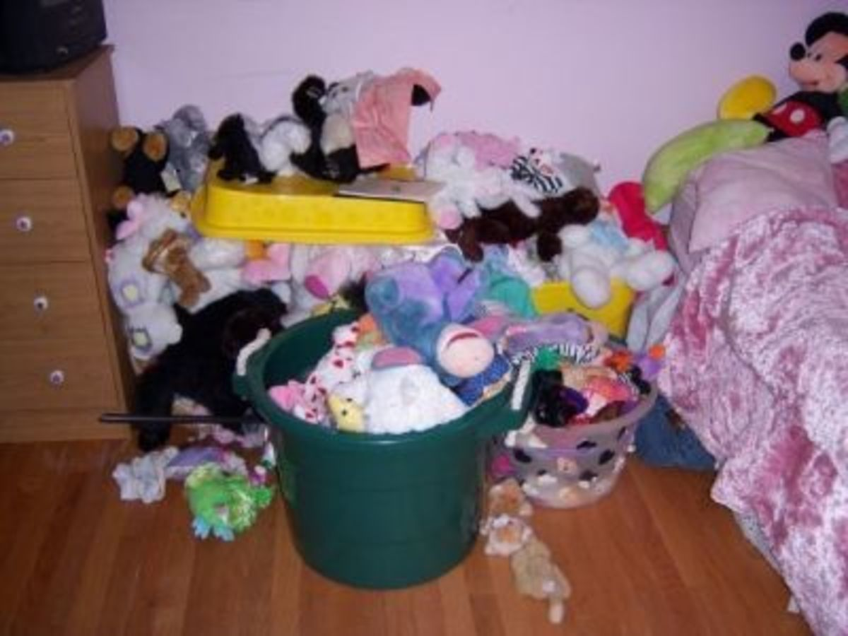 My Daughter's Stuffed Animals BEFORE