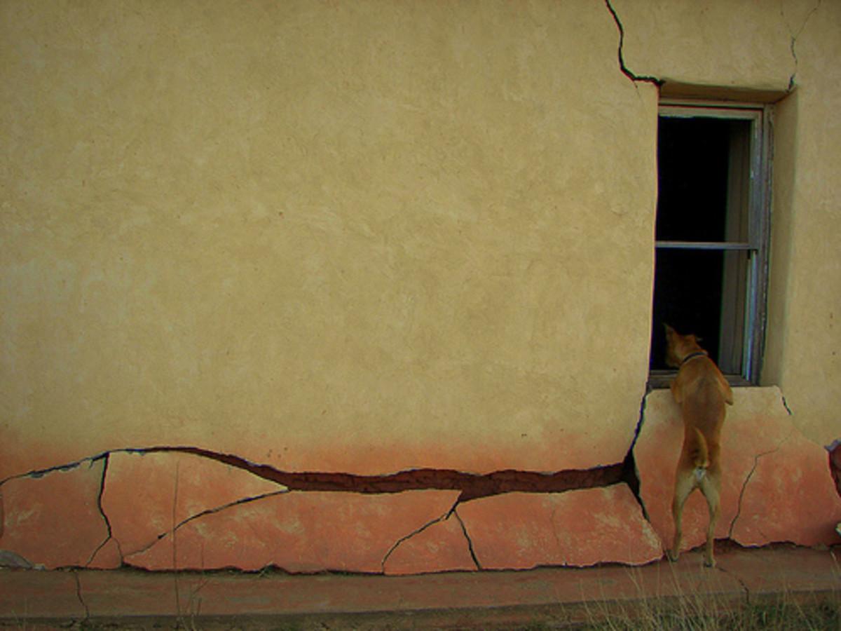 Freegan inhabited building - goddammaddog/flickr