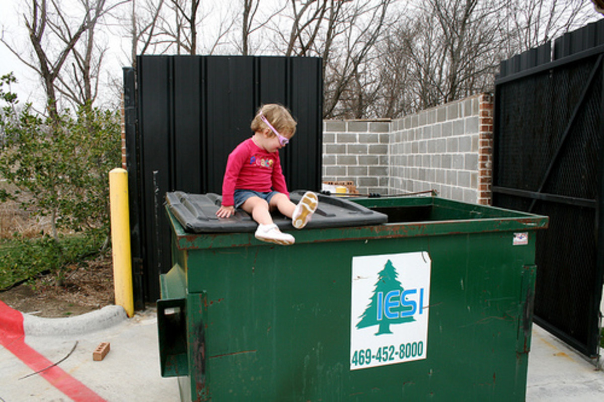 Freegan Dumpster Diving - thegarlands/flickr - Send in the kid.