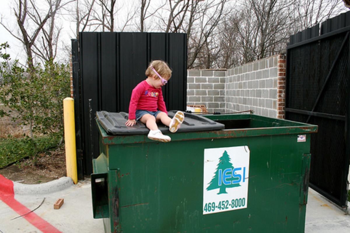 Freegan Dumpster Diving - thegarlands/flickr - Send in the kid.