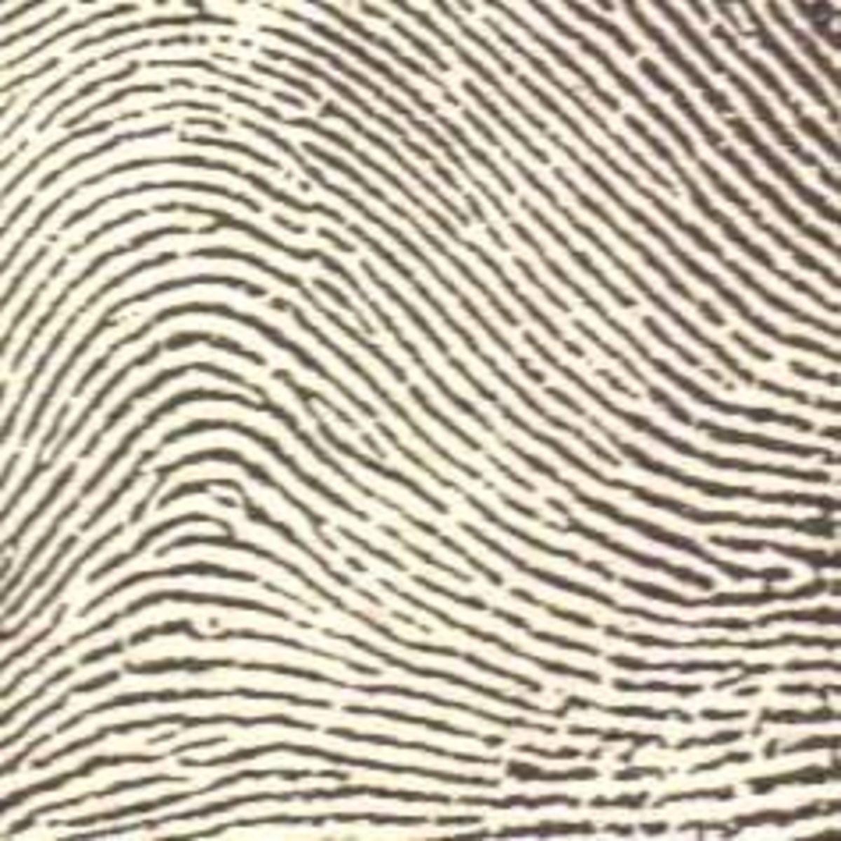 fingerprinting-2