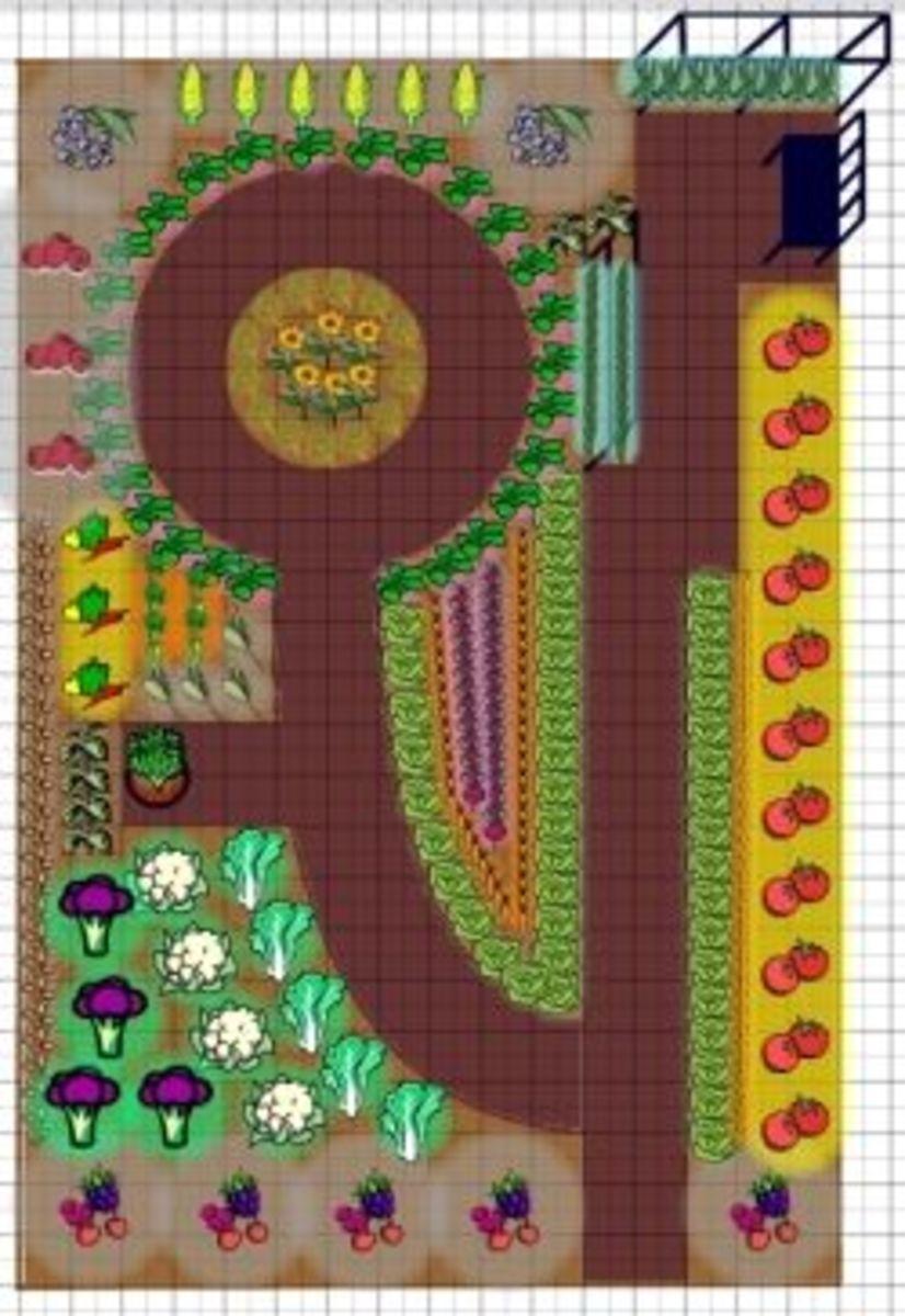 formal asymmetrical garden layout