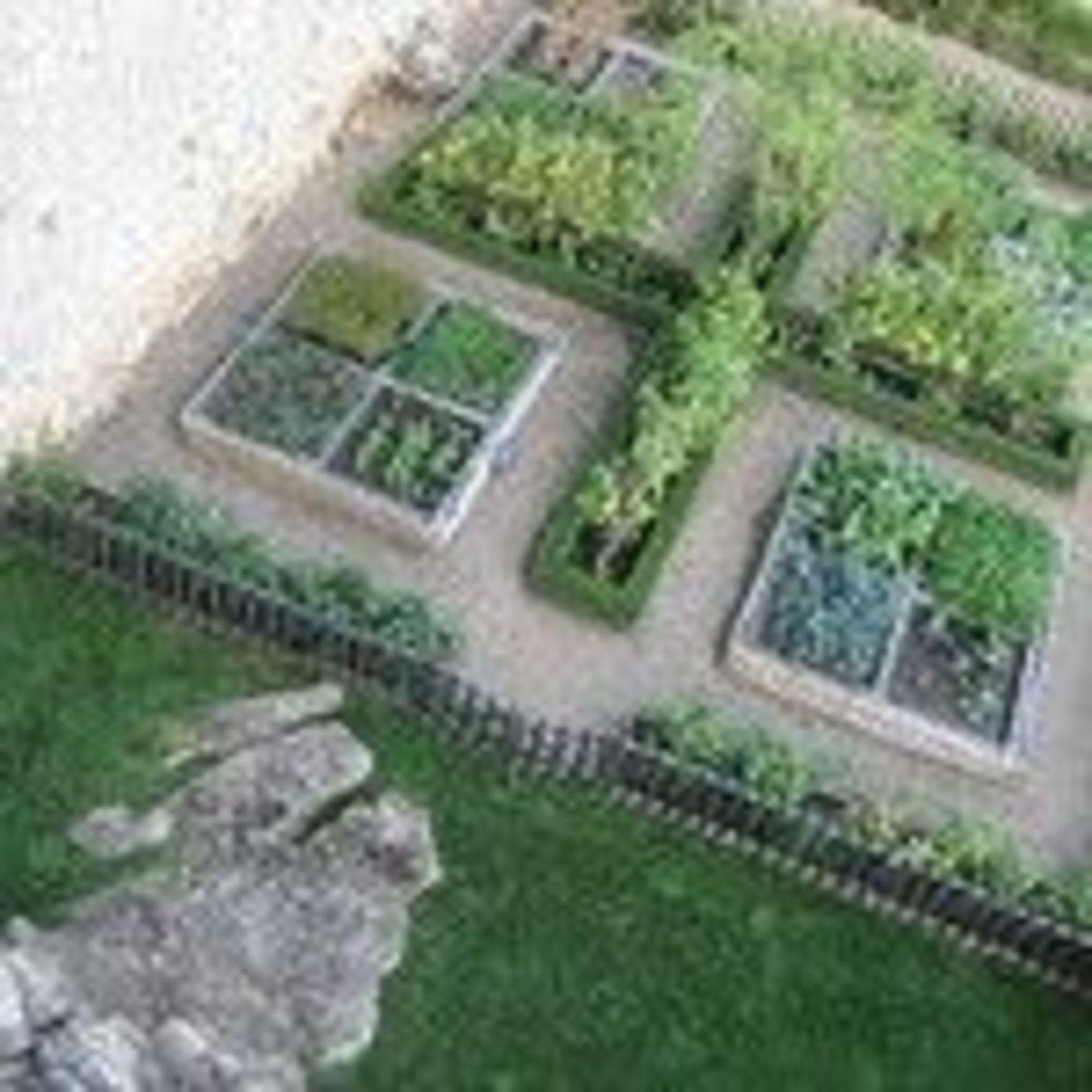 vegetablegardenlayout-2
