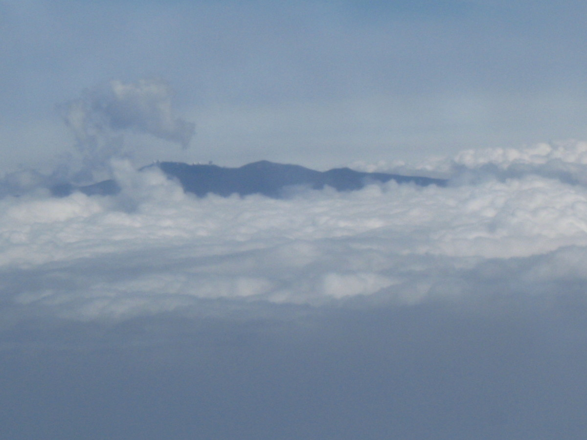 Summit of Mauna Kea or Mauna Loa poking through clouds as seen from an airplane