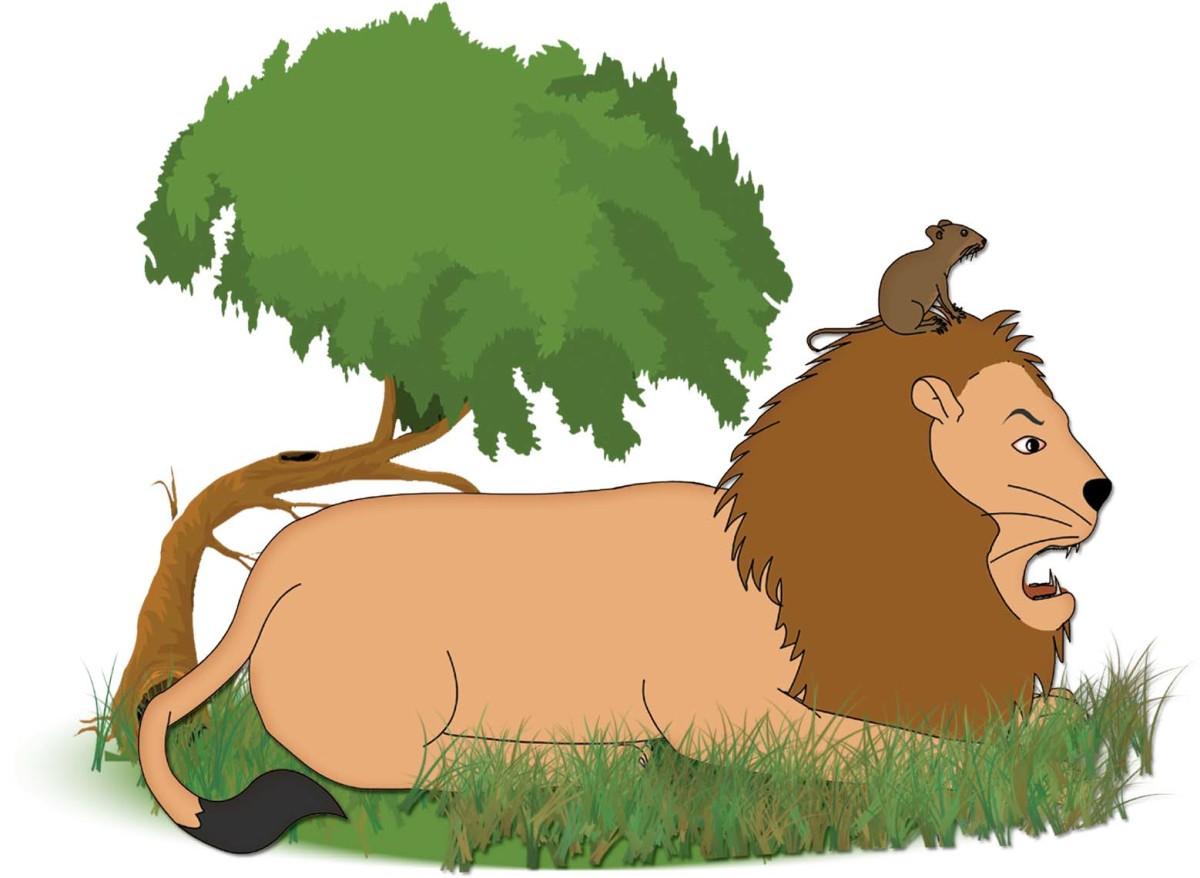 Neetu Mouse climbs on to Sheru Lion's head