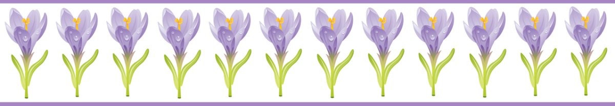 Purple crocus with purple stripes scrapbook border