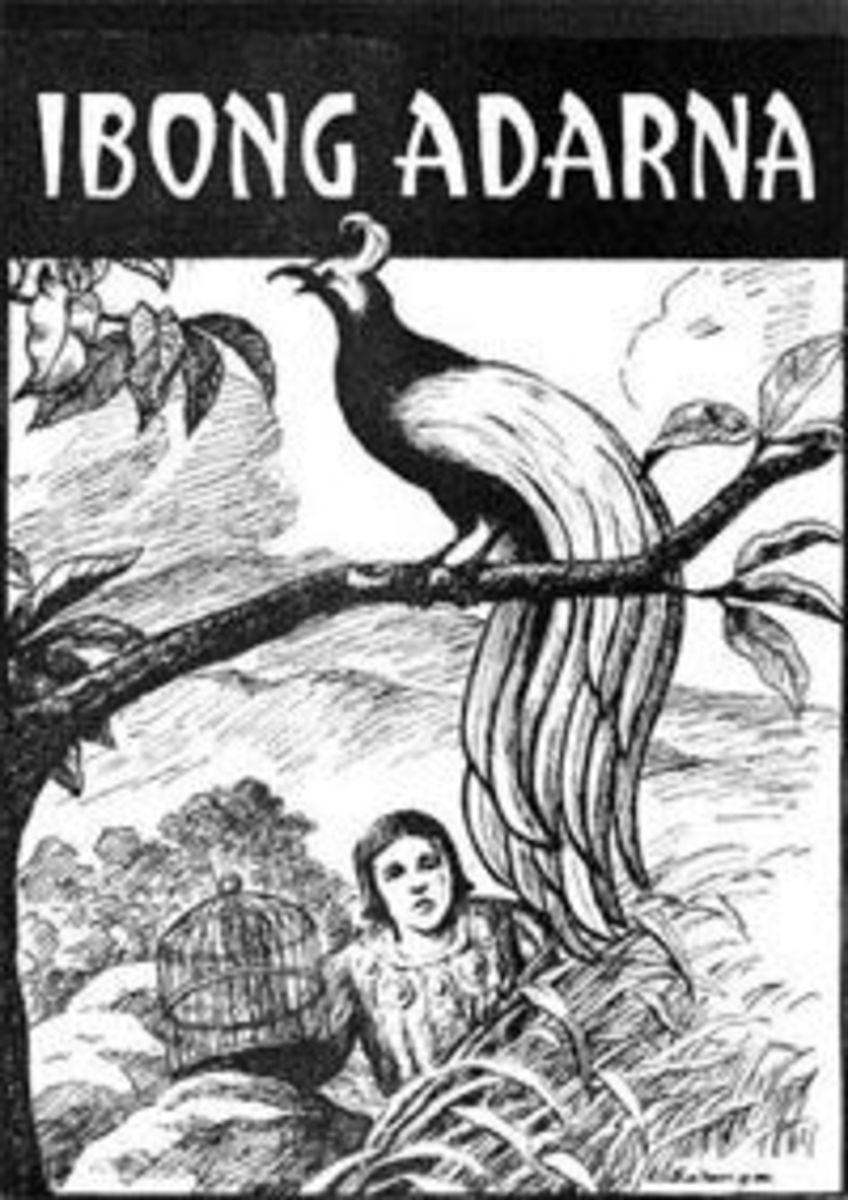 adarnabird